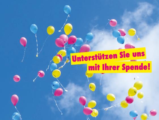 FDP KV Meißen
